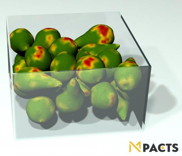 Simulation of pears in a box, damaged by transportation